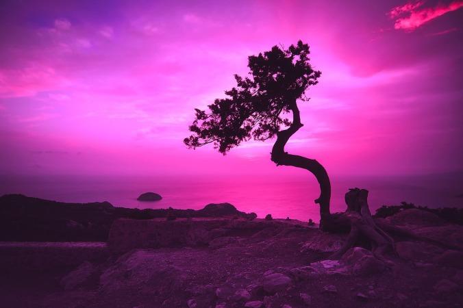 sunset-2052652_1280